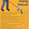 Infografik Kasus Yusuf