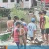 Perlawanan Dramatis Bocah 14 Tahun di Bontang yang Lolos dari Cengkeraman Buaya Muara