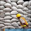 Awali Kinerja Ekspor 2021, Bungkil Sawit Kaltim Pasok Pasar Tiongkok